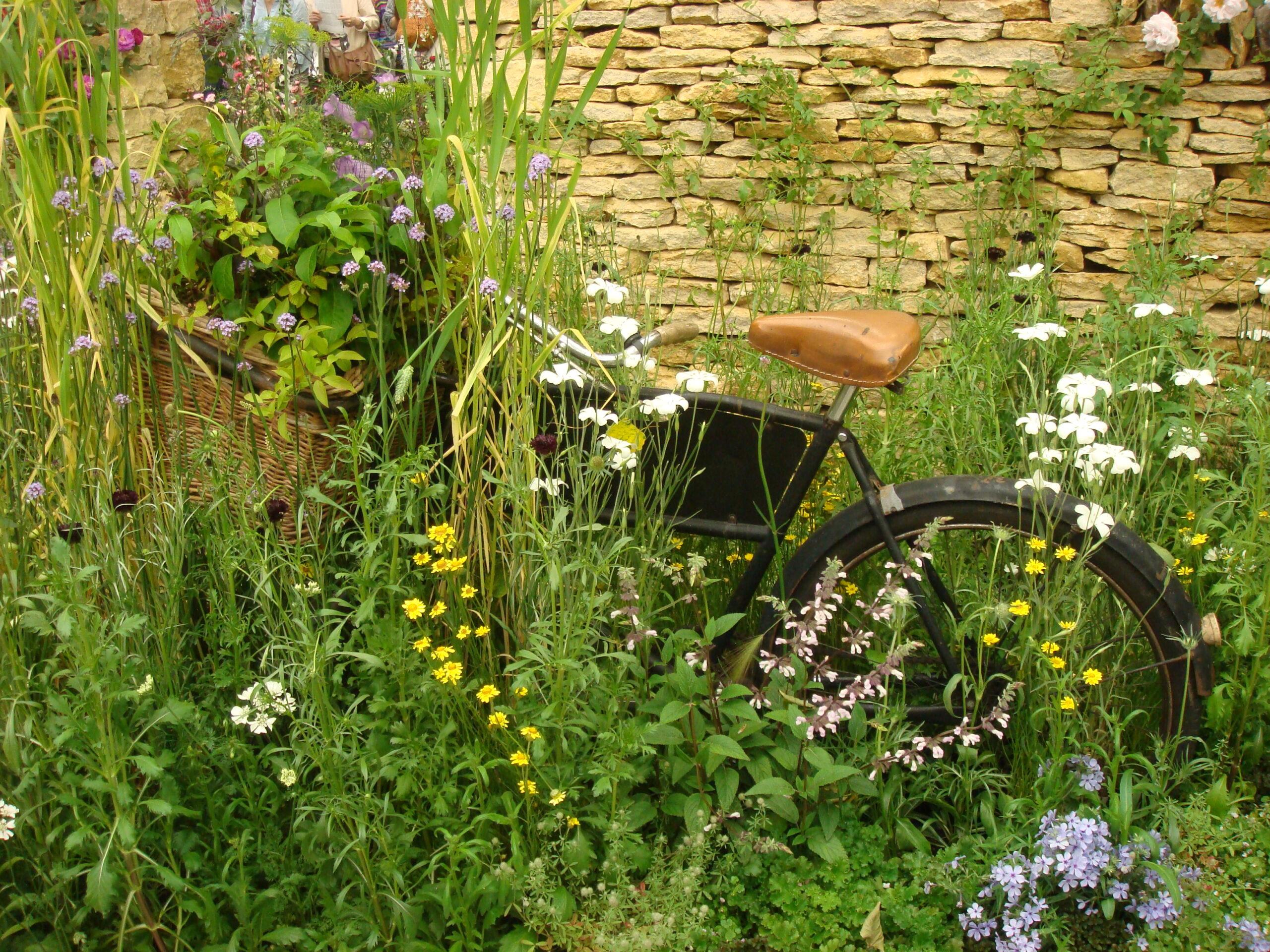 自転車と自然